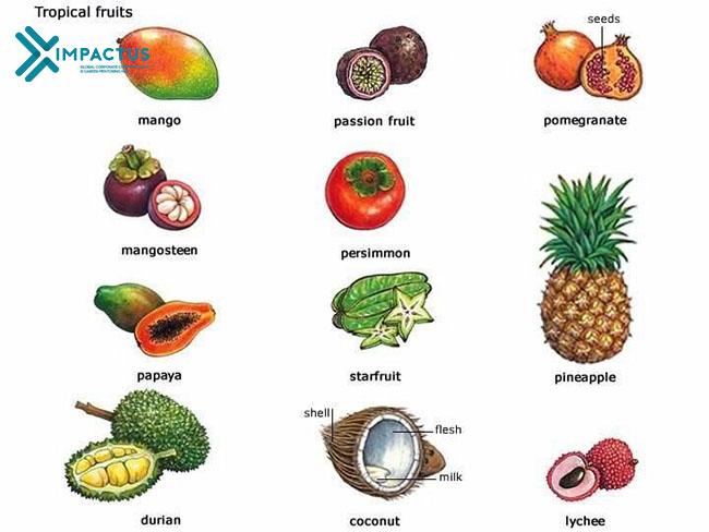 Tiếng Anh chủ đề hoa quả