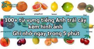 100 từ vựng tiếng Anh trái cây hoa quả
